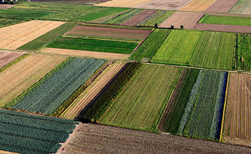 کاربرد آیلاگرز در فرآیند های کشاورزی